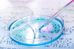 Анализы ДНК (генетические анализы)